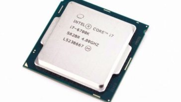 IMGP1316