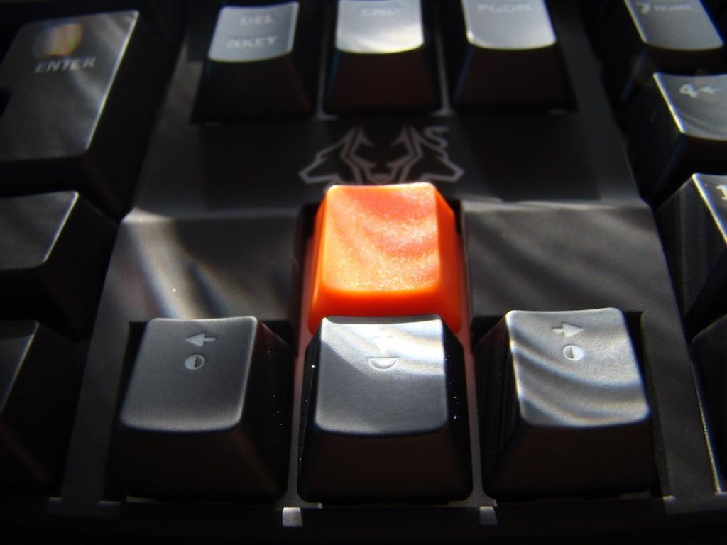 touche orange