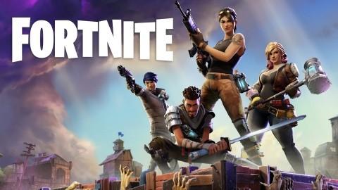 Nvidia Geforce 390.65 WHQL Fortnite
