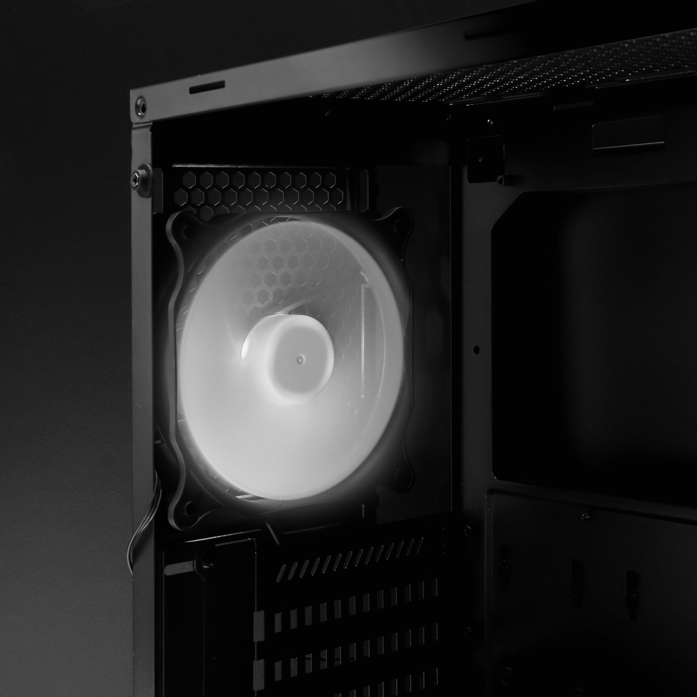 P6 white LED fan